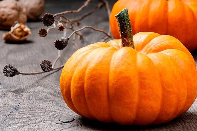 Pumpkin Shortage in Illinois